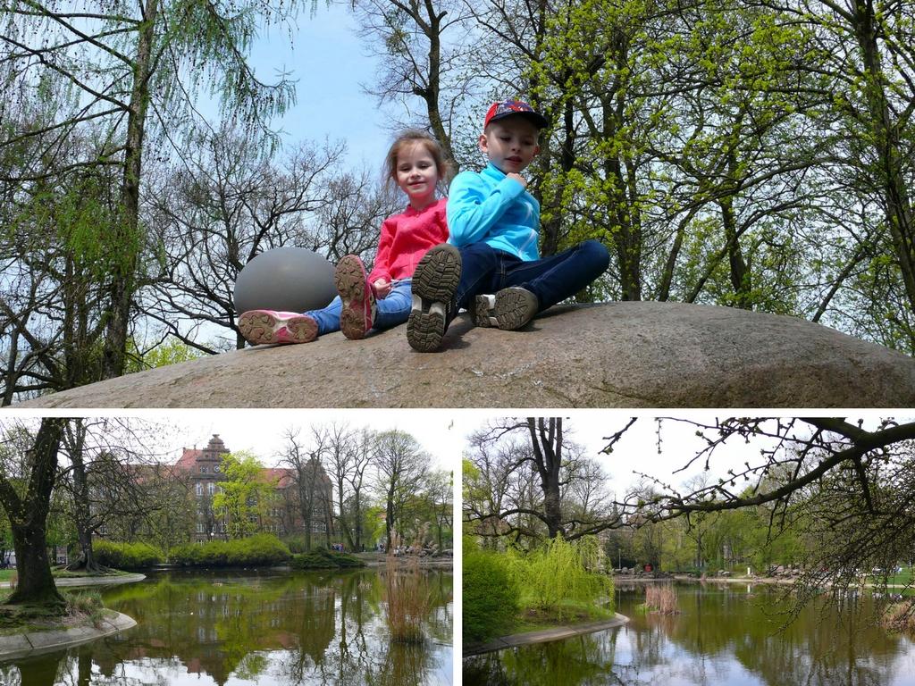 Palmiarnia w Poznaniu, Park Wilsona